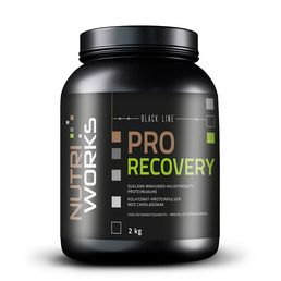 Nutri Works Pro Recovery -recovery drink 2000g