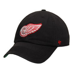 Detroit Red Wings 47